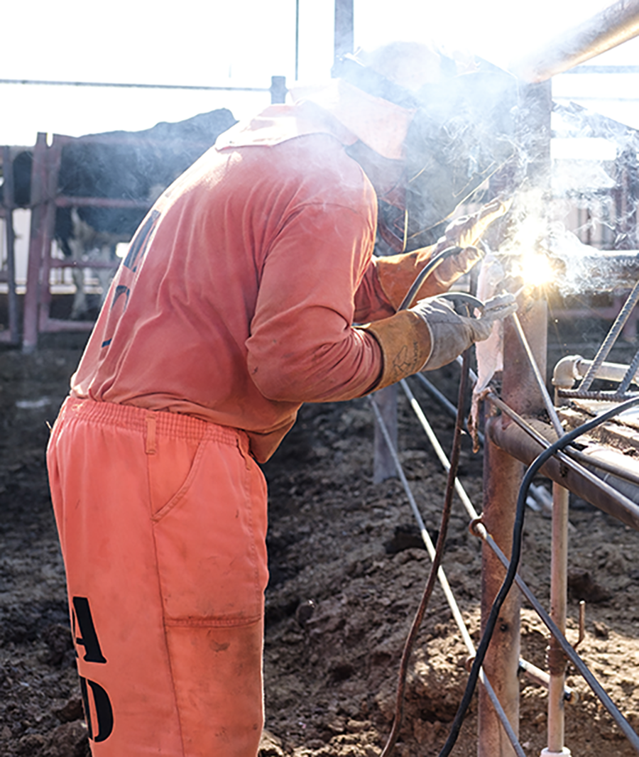 dairy-welding-fence.png
